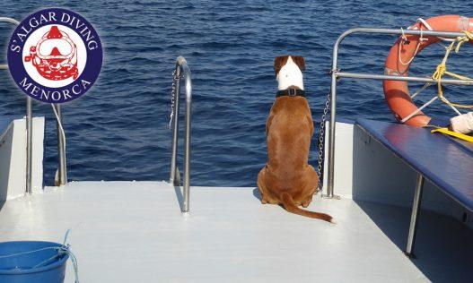 Lima on boat watch | S'Algar Diving Menorca